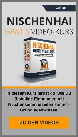 Gratis Video Kurs - Nischenseiten