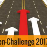 Nischenseiten-Challenge 2017 - Woche 3-6